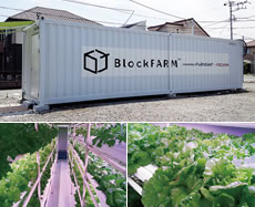 Container-based cultivation system